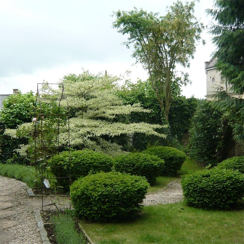Landscape gardening courses oxfordshire for Garden design oxfordshire