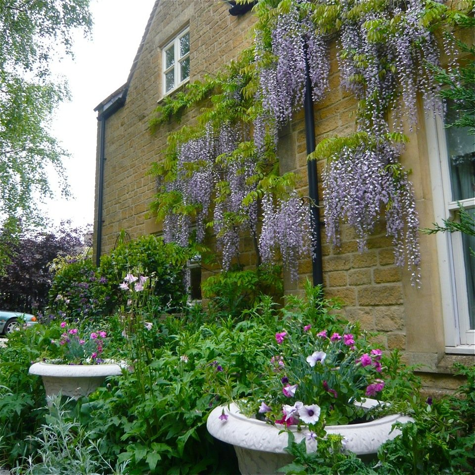 Joanne_Alderson_Garden_Design_Oxfordshire_Cotswolds_4