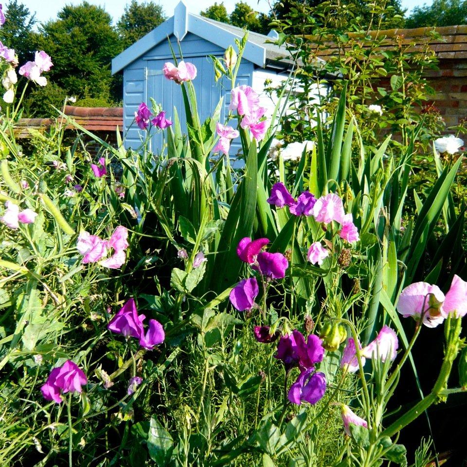 Joanne_Alderson_Garden_Design_Oxfordshire_Estate_10