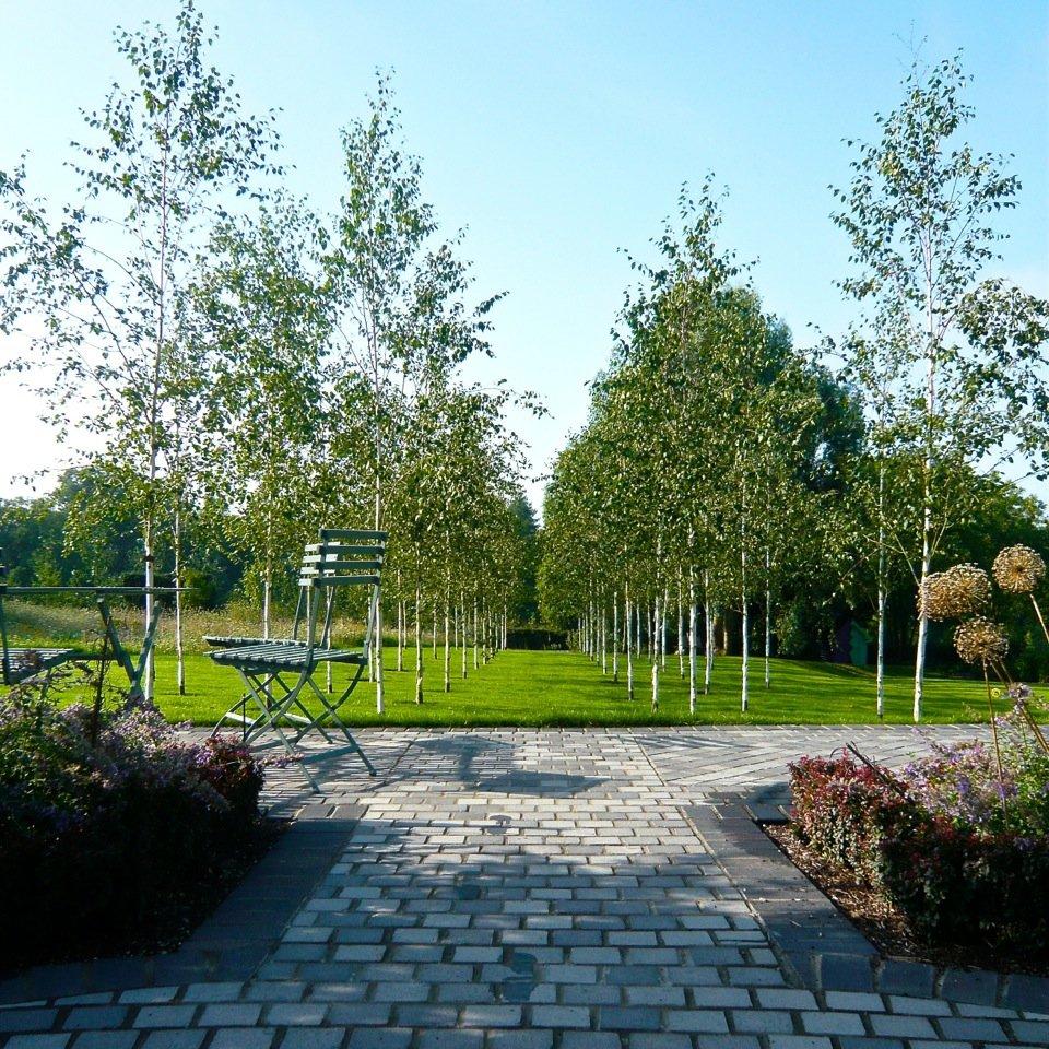 Joanne_Alderson_Garden_Design_Oxfordshire_Estate_11