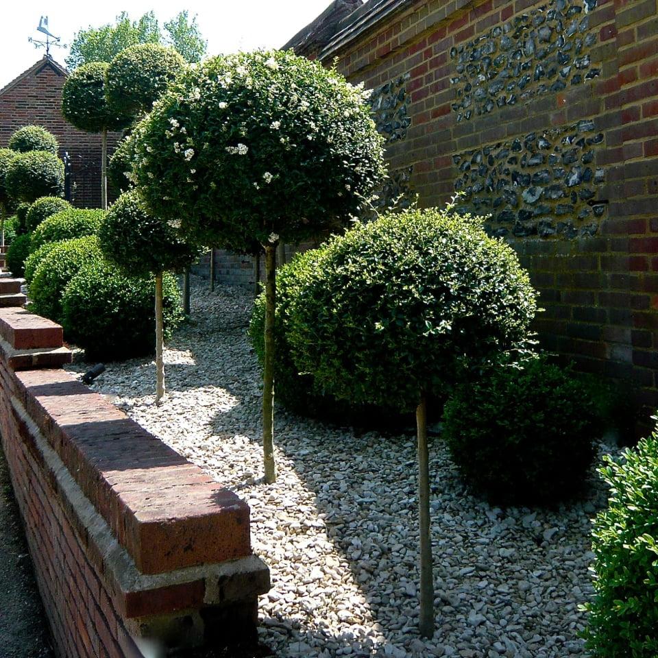 Joanne_Alderson_Garden_Design_Oxfordshire_Estate_12