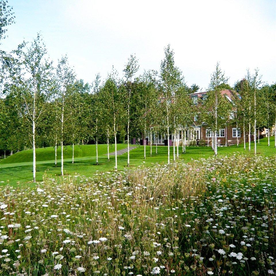 Joanne_Alderson_Garden_Design_Oxfordshire_Estate_1