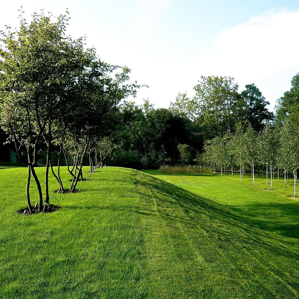 Joanne_Alderson_Garden_Design_Oxfordshire_Estate_2