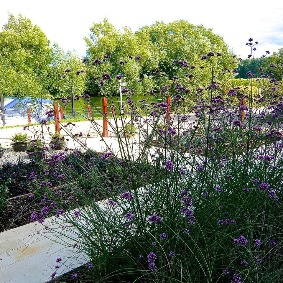 Joanne_Alderson_Garden_Design_Oxfordshire_Thameside_4