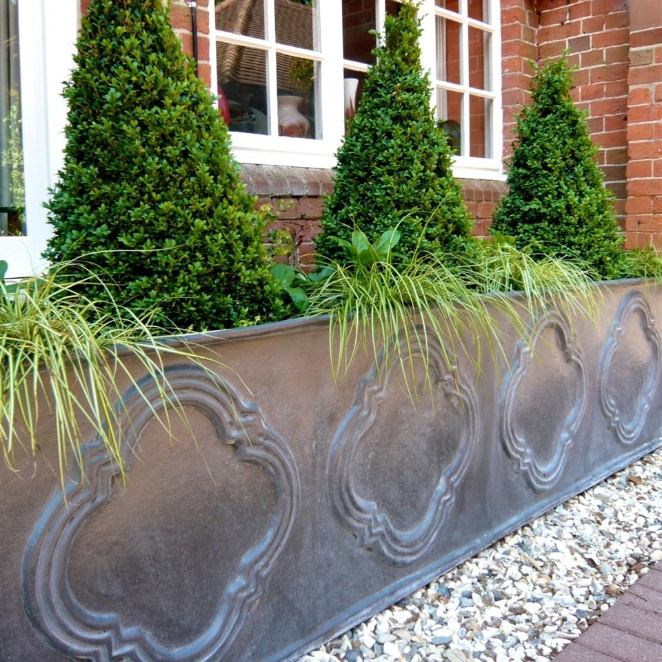 Box topiary & grasses in this large lead planter at the entrance to a large victorian country house