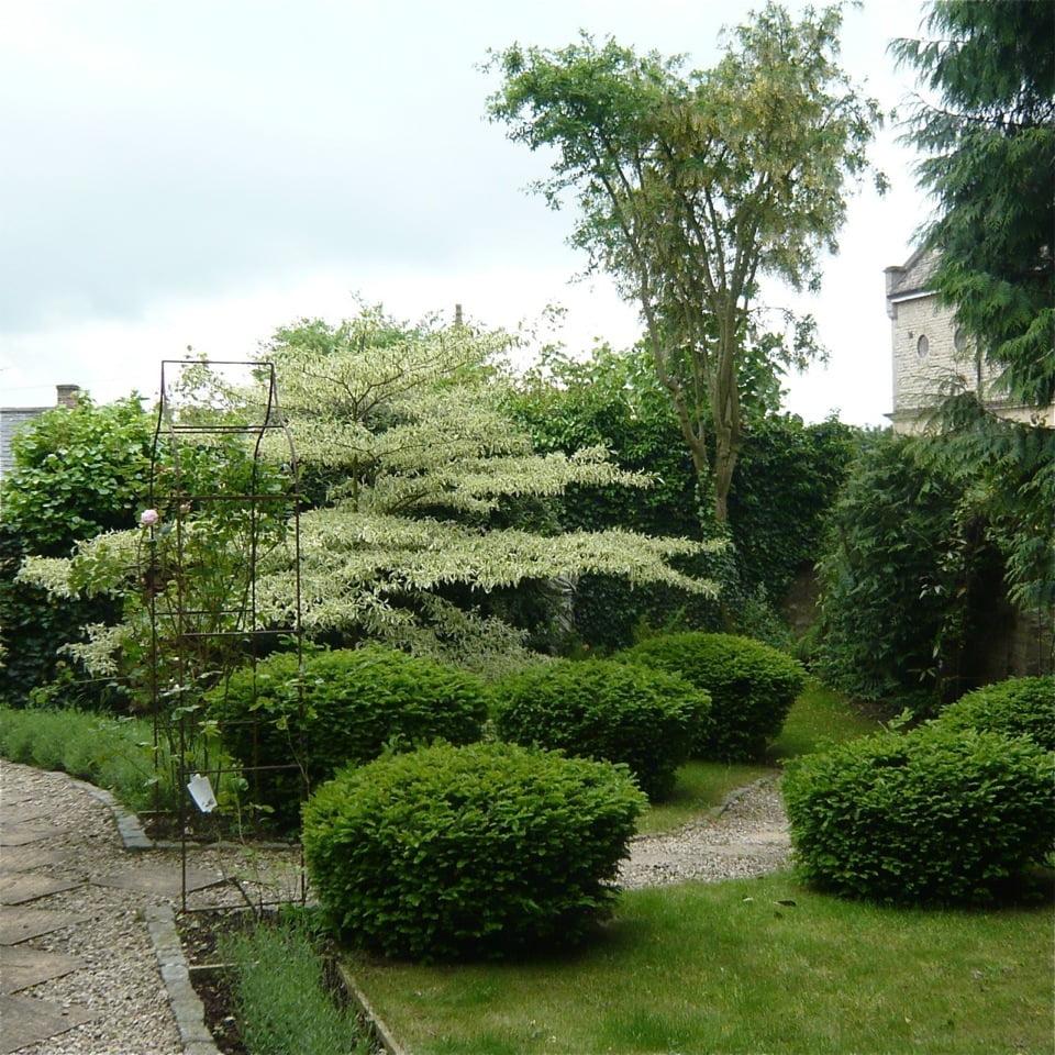 Joanne_Alderson_Garden_Design_Oxfordshire_Cotswolds_3