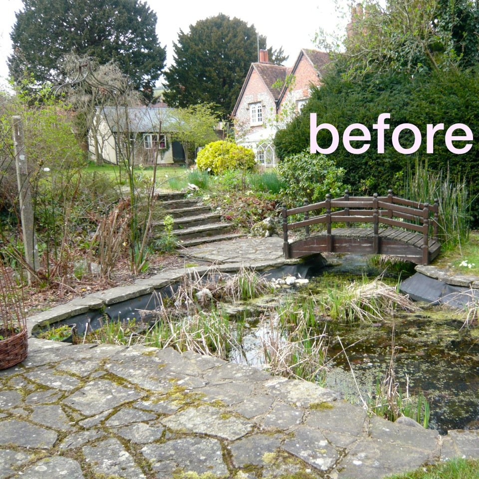 Cottage garden before shot