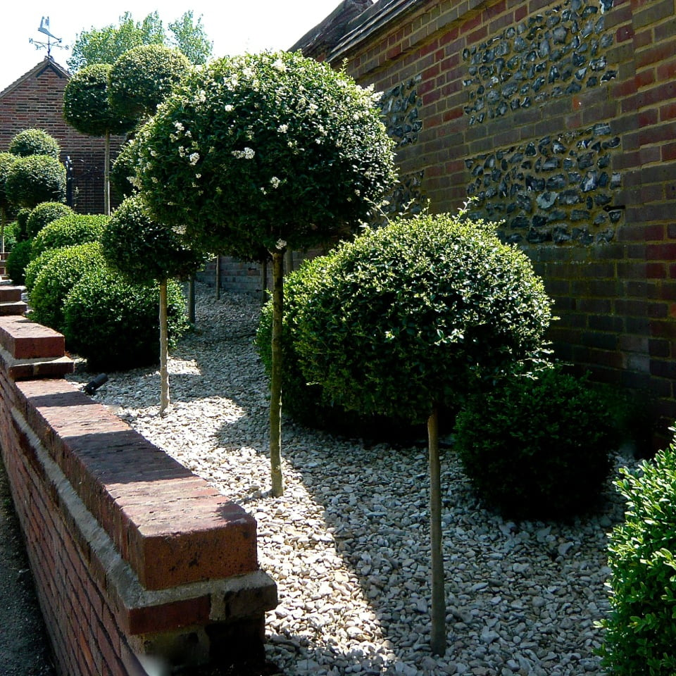 Joanne_Alderson_Garden_Design_Oxfordshire_Estate_12