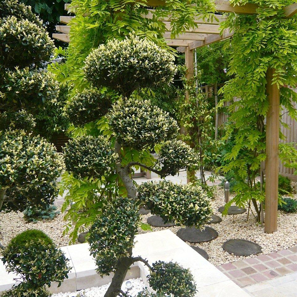 Joanne_Alderson_Garden_Design_Oxfordshire_Zen_6_Featured