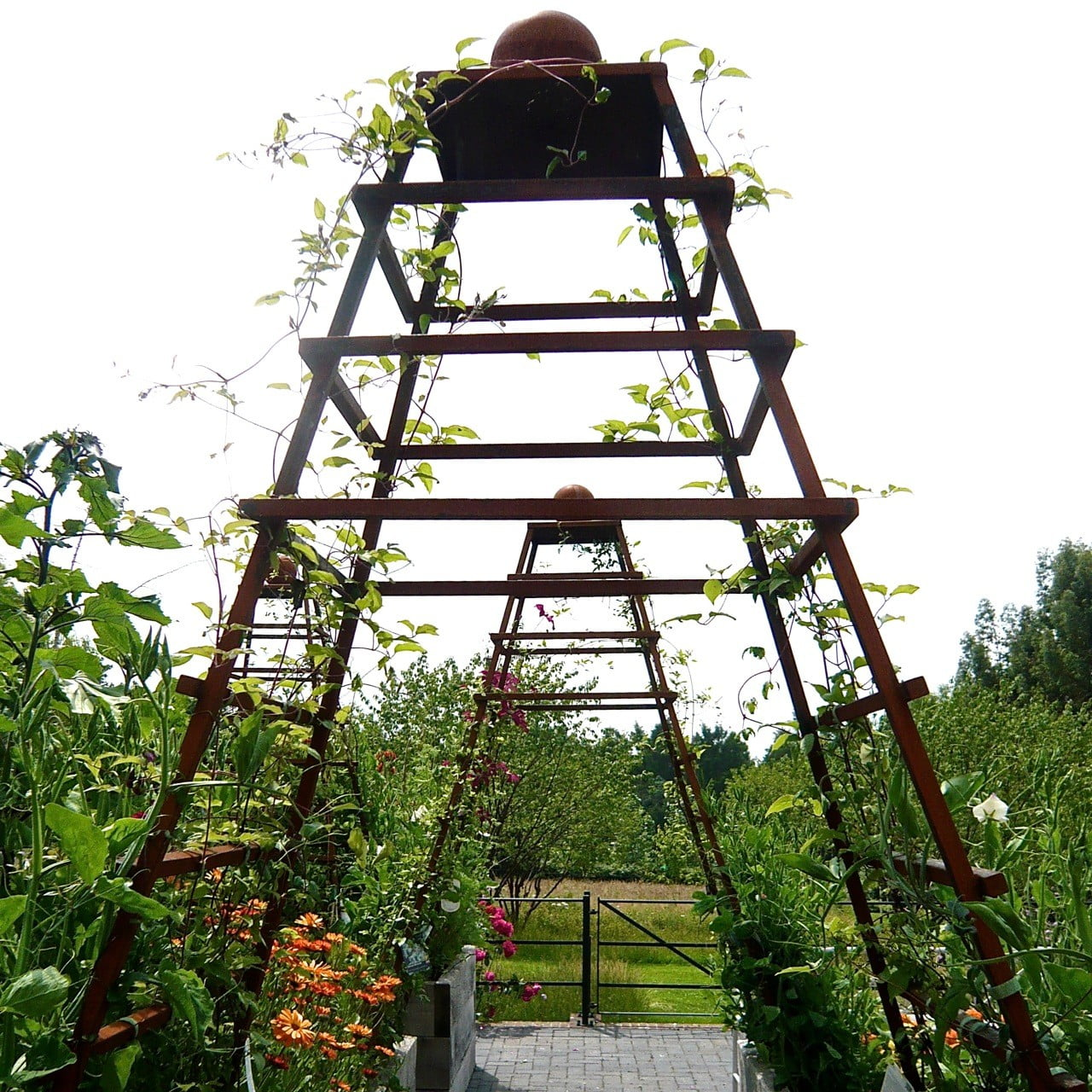 Bespoke obelisks in the kitchen garden