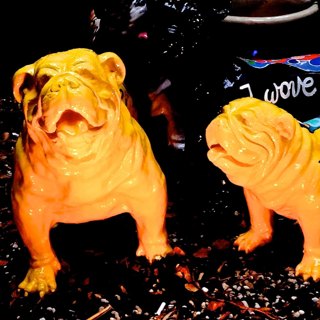 Gaudy dogs in Brussels