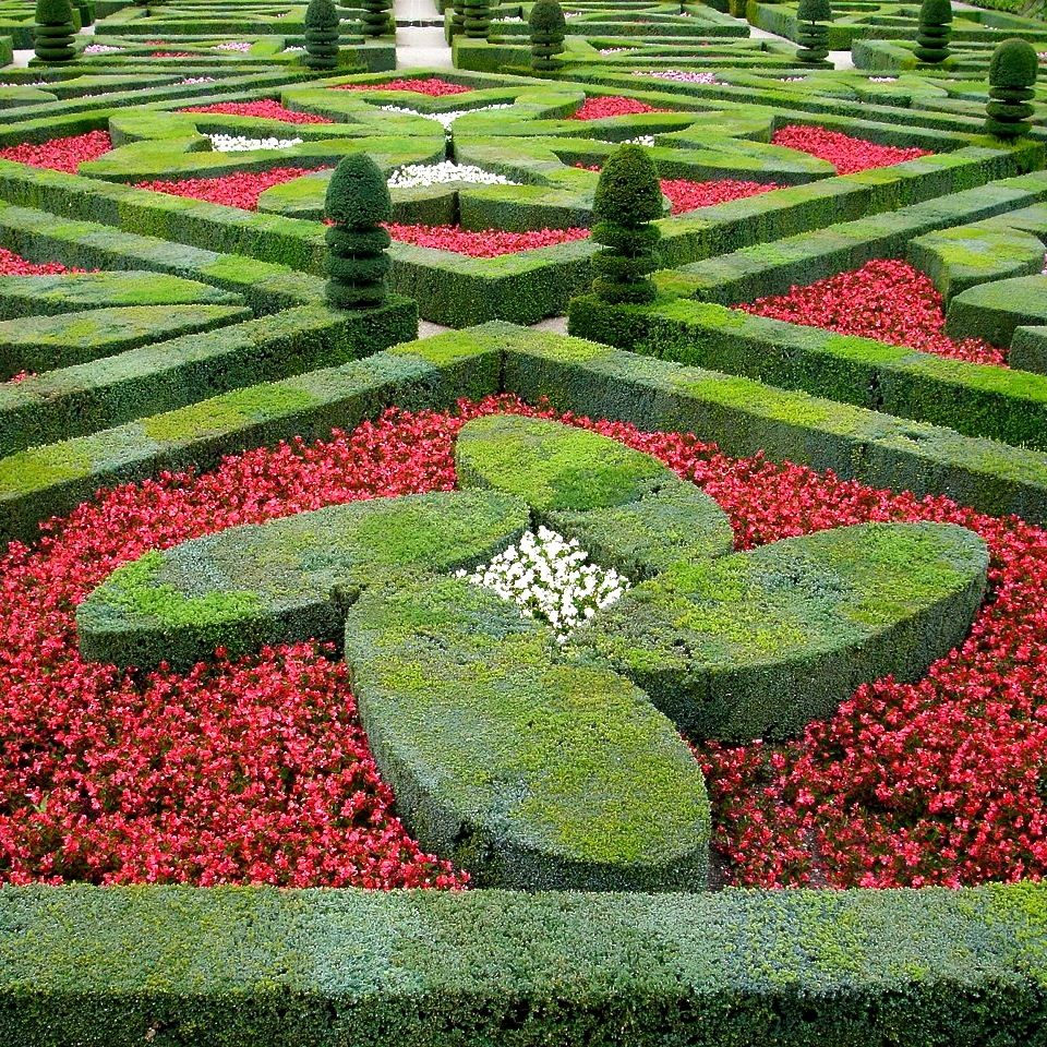 Jo Alderson design Garden designer Berkshire Oxfordshire & London - trip to Villandry 2