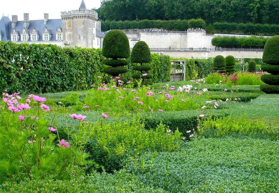 I took this photo at the amazing gardens of Villandry in the Loire Valley. It is astonishing to see in the flesh with so much attention to detail in this wonderful place