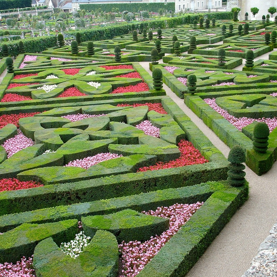 Jo Alderson design Garden designer Berkshire Oxfordshire & London - trip to Villandry 8