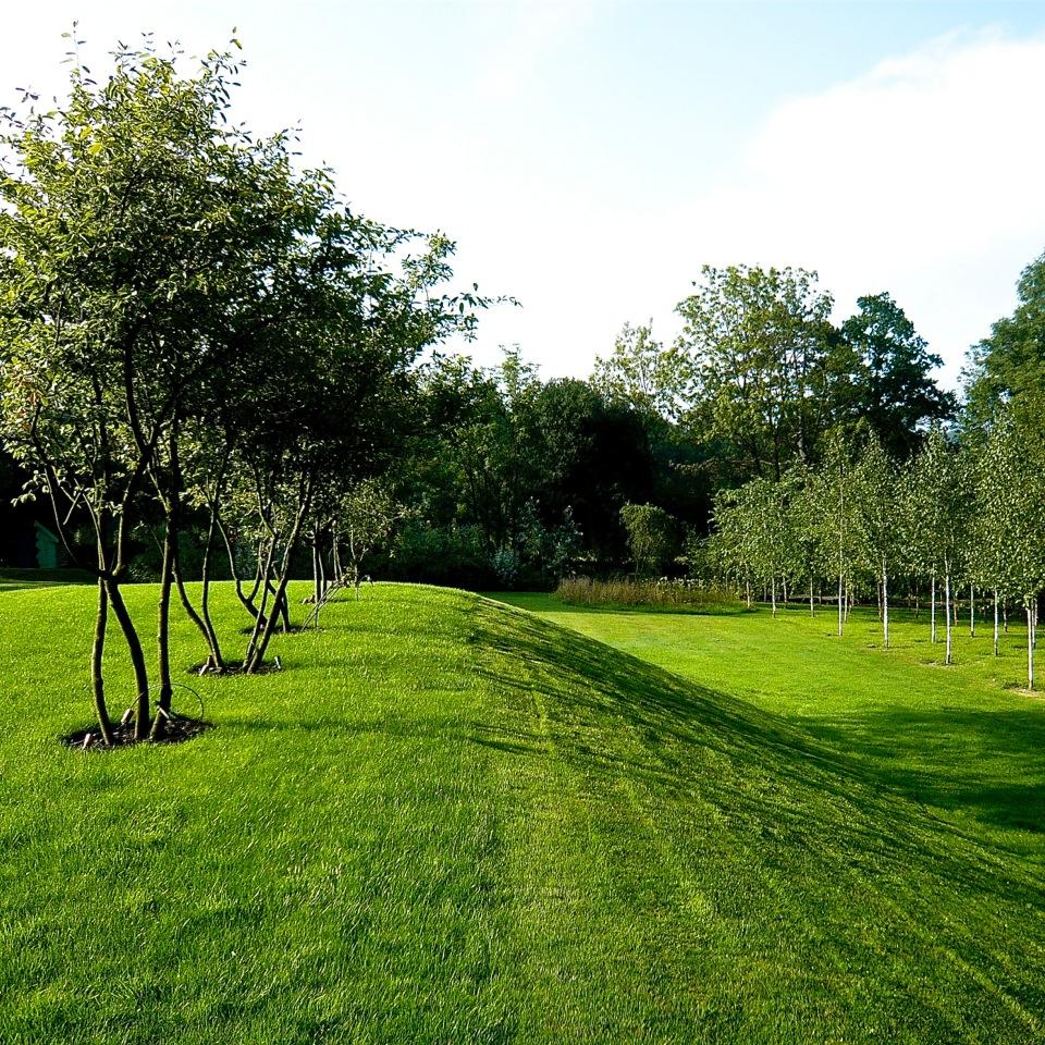 Joanne-Alderson-Garden-Design-2