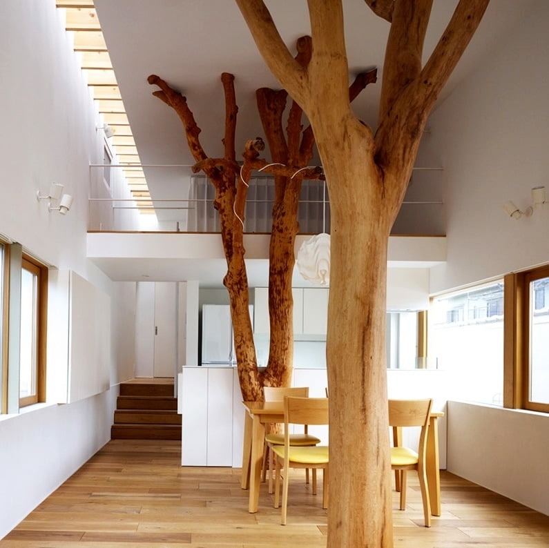 This is quite an extreme take on tree houses! Really amazing & surprisingly effective.