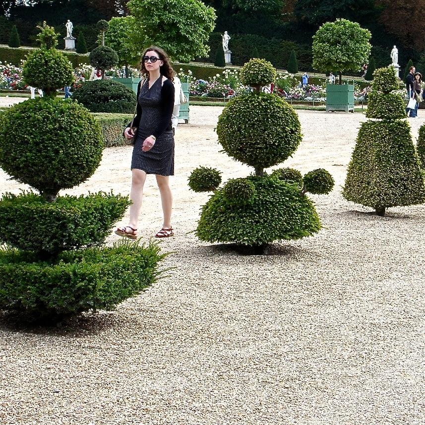 Jo alderson design knot garden within walled garden for Knot garden designs herbs