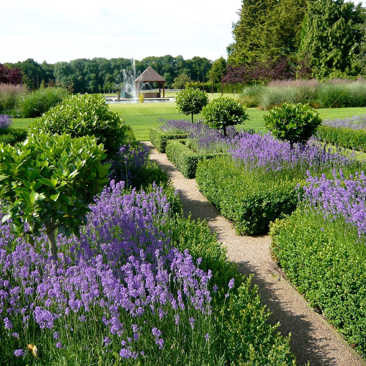 This is the lovely large parterre in a very large country garden near Henley On Thames I designed. It used to be a commercial nursery so it's quite a transformation!