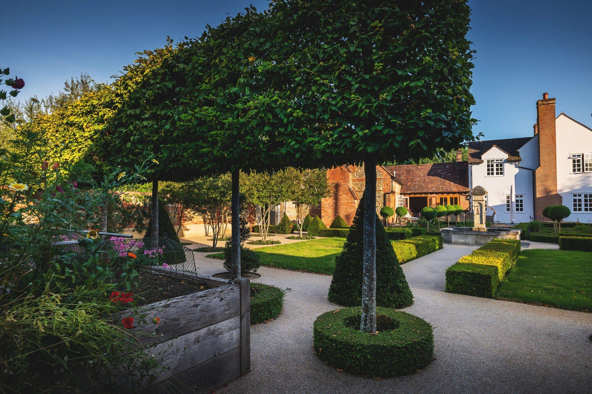 Pleached trees & French style garden by Jo Alderson Phillips