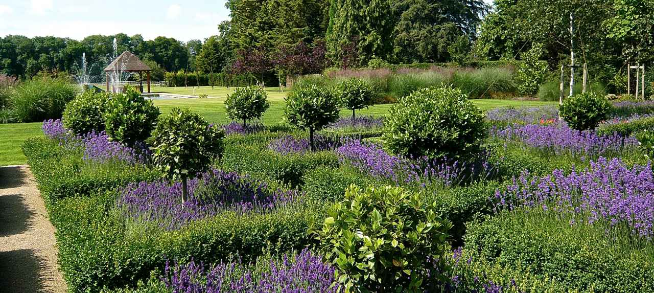 A large garden with formal styling with lots of lavenders within the parterre & a formal square pool & summerhouse