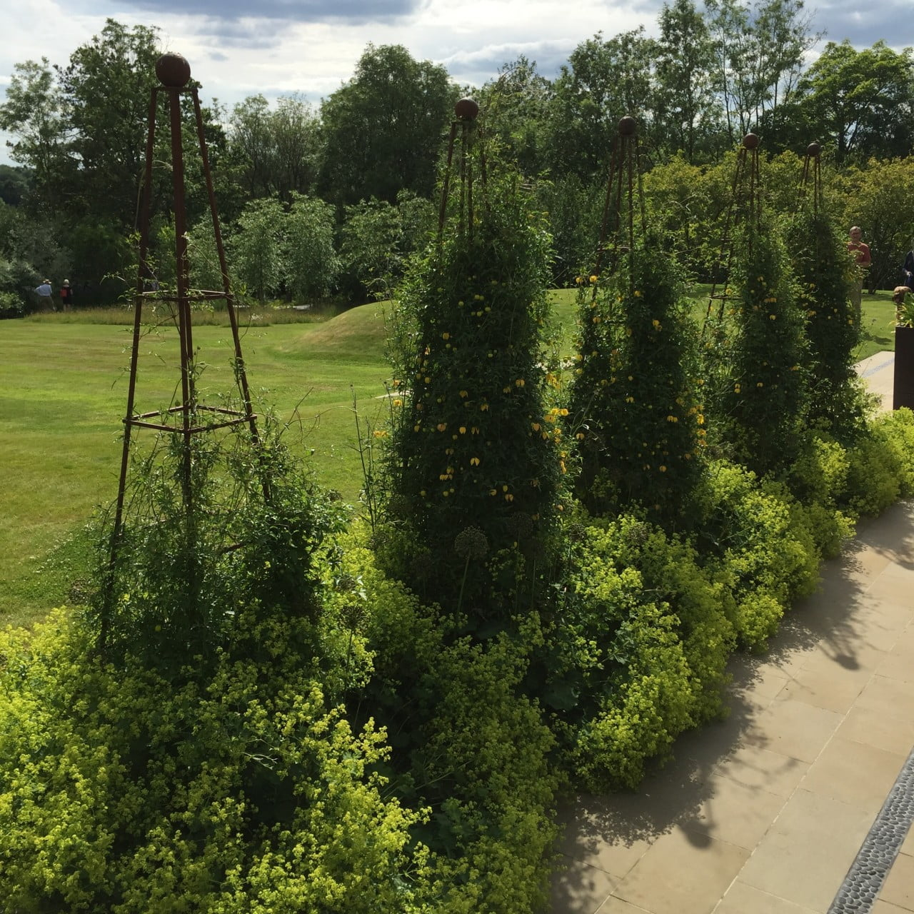 I persuaded my client to have these very tall obelisks for climbers to break up the terrace in this very large garden. They work really well due to using the correct proportion