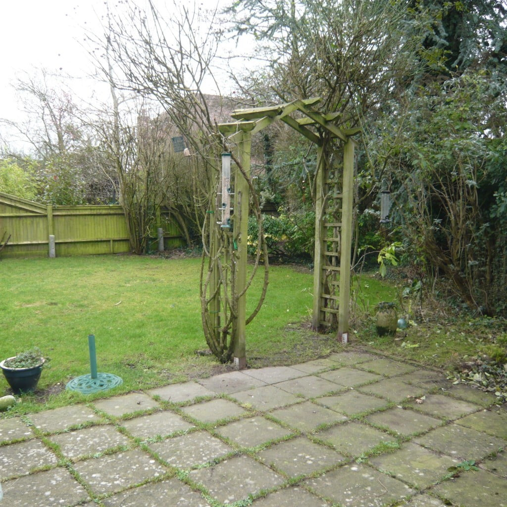 This is the garden as it was when I first saw t. Pretty miserable