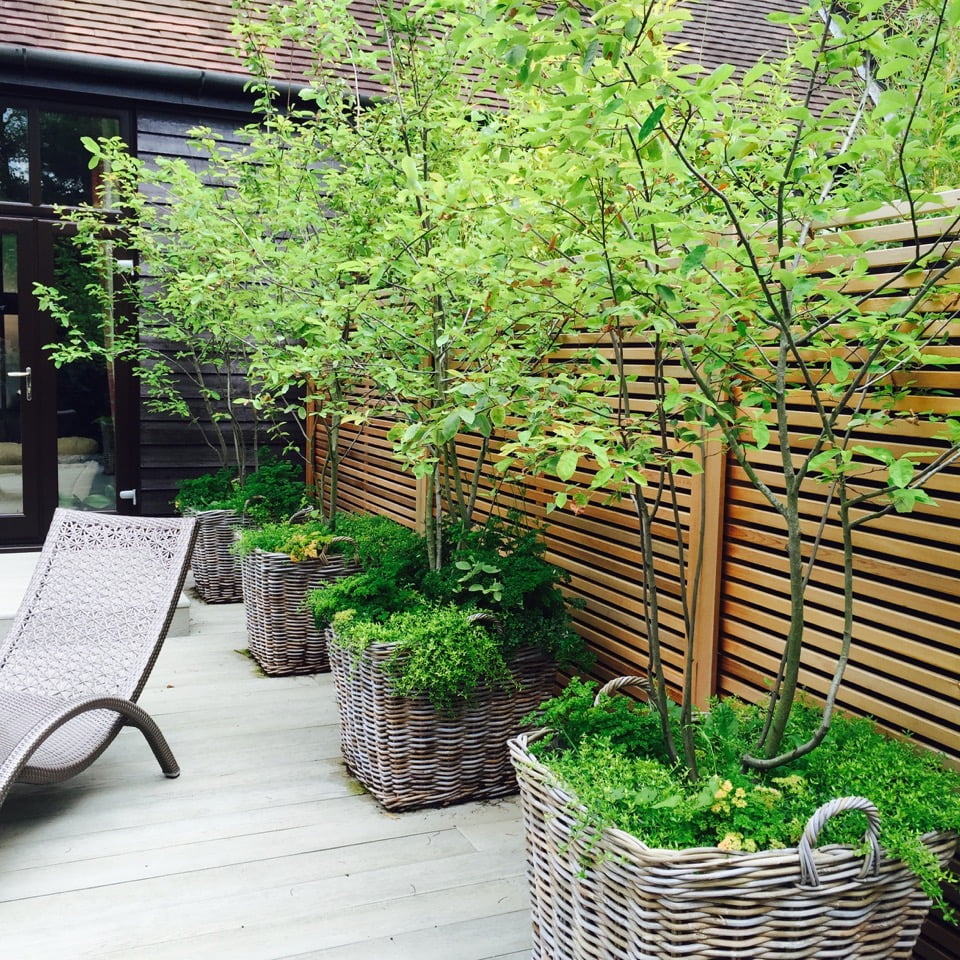 Barn conversion garden jo alderson phillips for Garden conversion