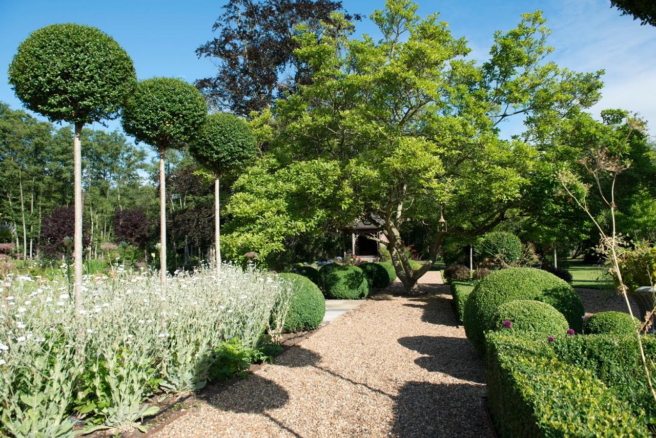 Pretty white planting as part of this formal garden design with topiary