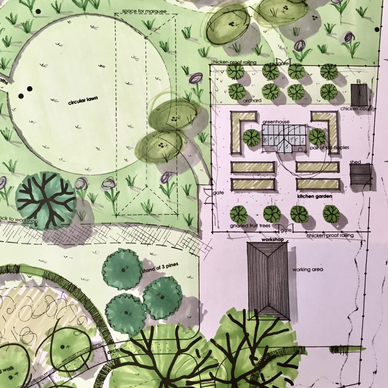 This is my drawing for a kitchen garden for my clients in Berkhamstead with raised beds, fruit trees & a bespoke greenhouse