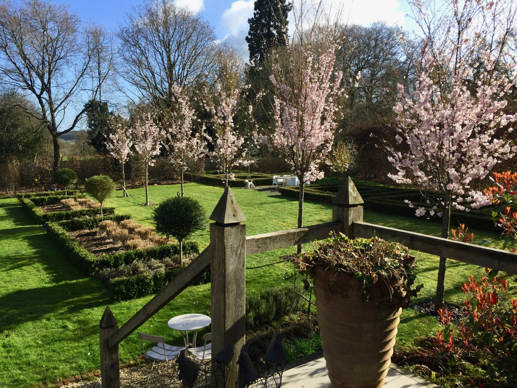 This is our own garden coming back to life after a really dreary winter. The cherry trees are in blossom & the amelanchier trees beyond have huge buds so should look lovely soon too