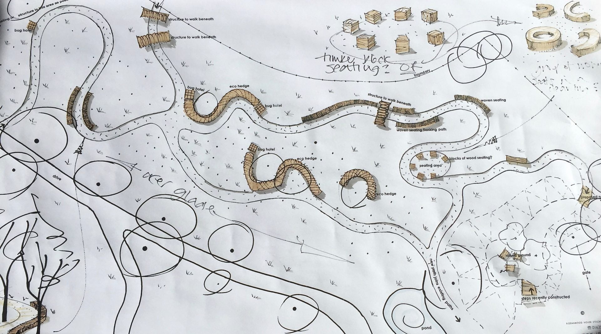 A drawing of a woodland walk in a garden in Buckinghamshire by Jo Alderson Design