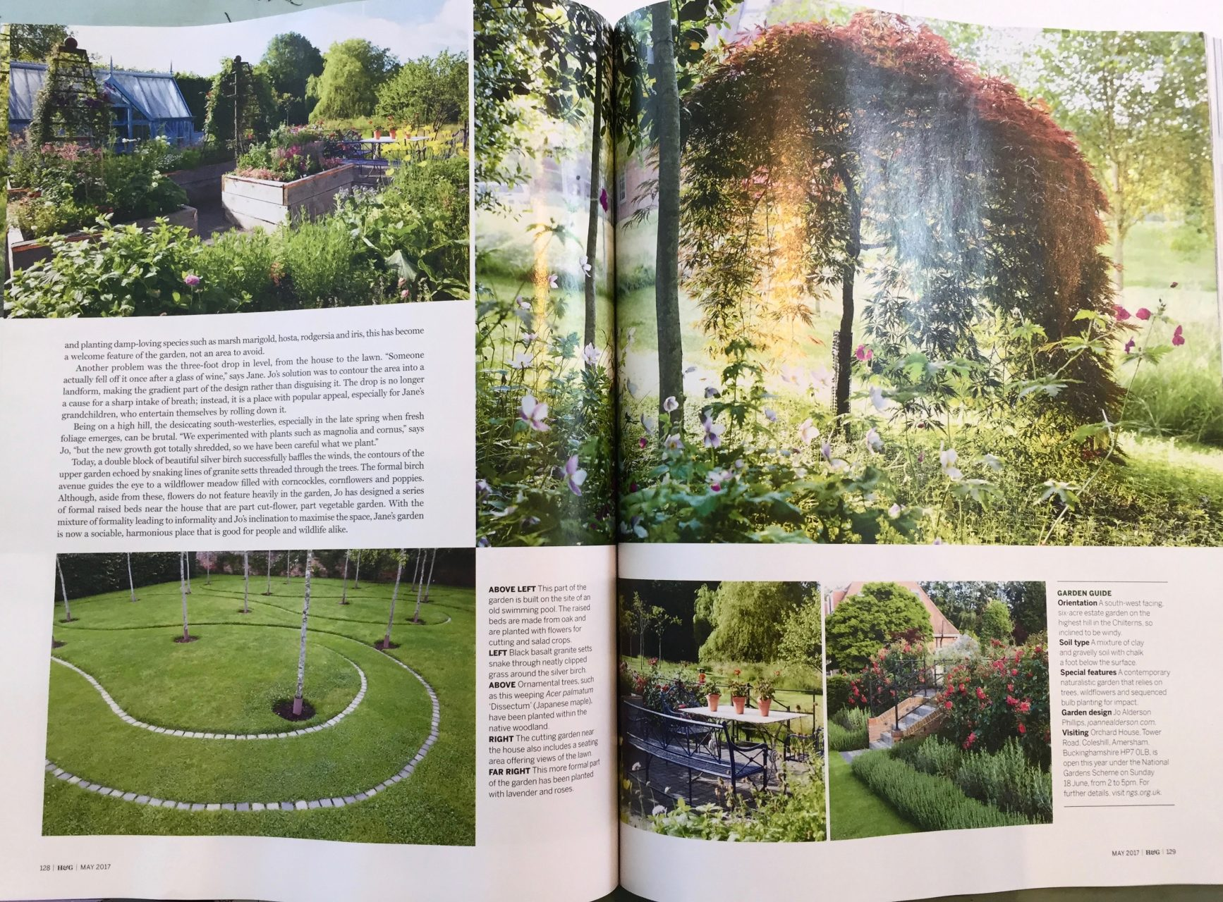 This is part of the article on the garden at Orchard House that I designed for my lovely clients Jane & Doug. It is near Beaconsfield
