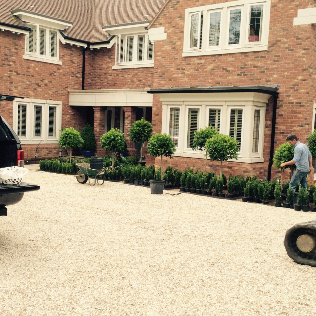 A parterre being built. Here the teams are just placing the plants before any planting can take place