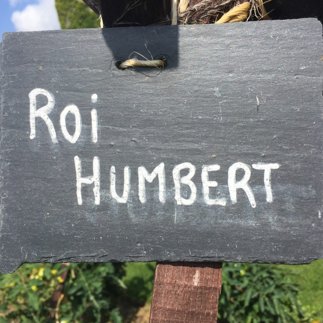 Roi Humbert is a type of tomato grown at Chateau Bourdaisiere
