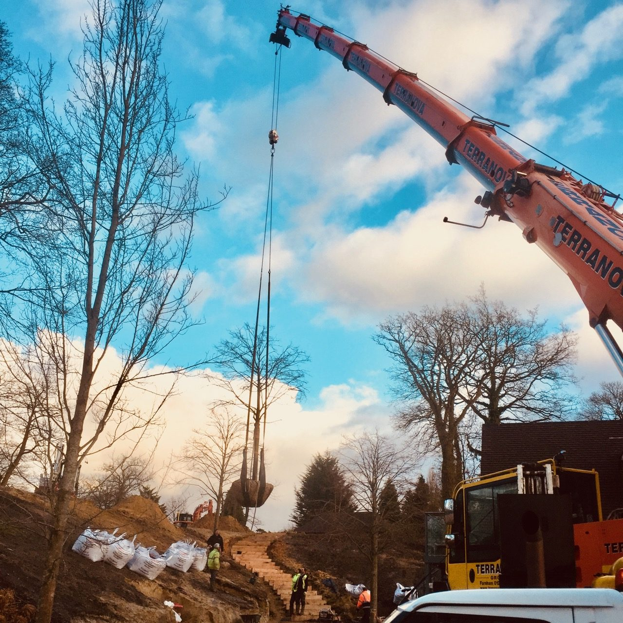 Creating the new landscaped banks with mature lime trees being craned in by Jo Alderson Design & TS Landscapes