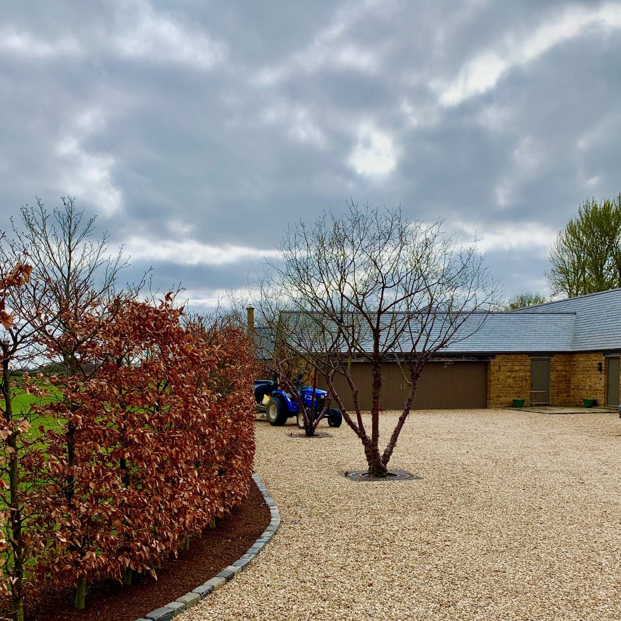 Beautiful multistemmed prunus serrula trees marking out the parking slots in this Cotswold garden I designed