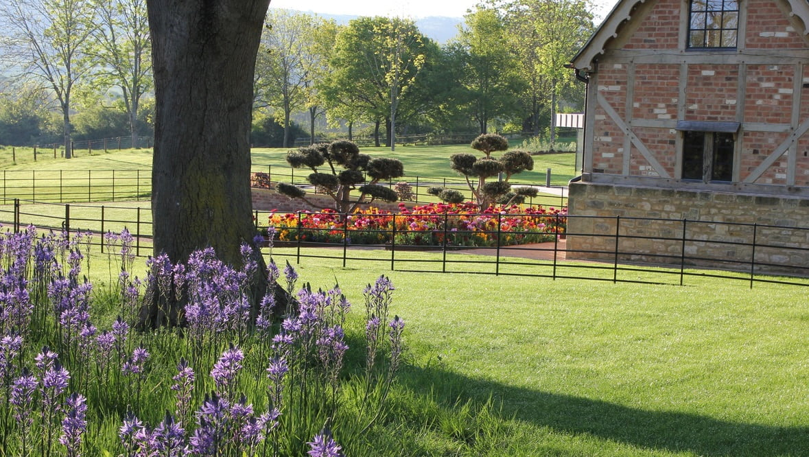 A view from the drive towards the Tudor Cottage with pretty & colourful planting for my colour loving clients