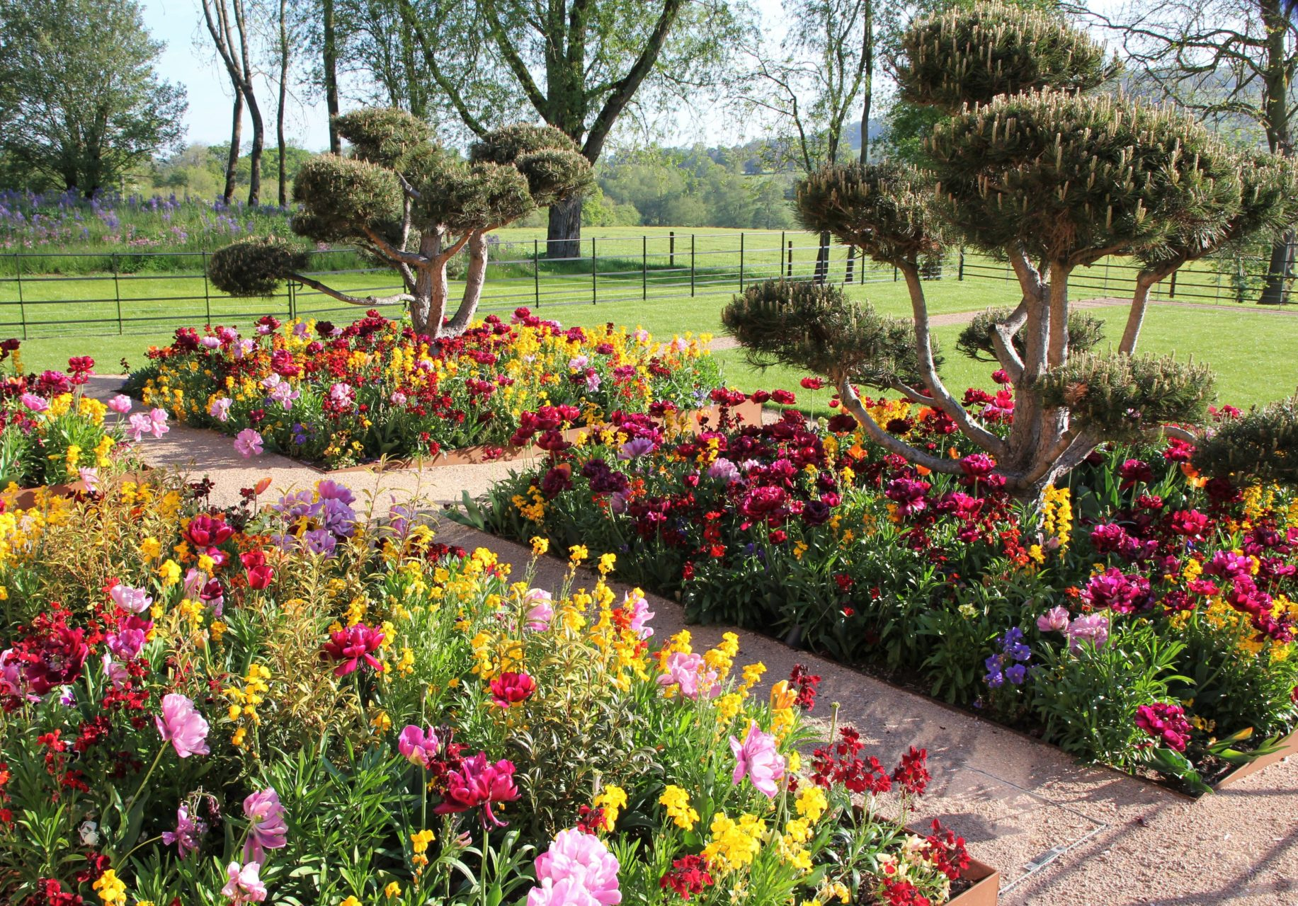 my clients loved colour so this area has a mass of colourful planting throughout the seasons