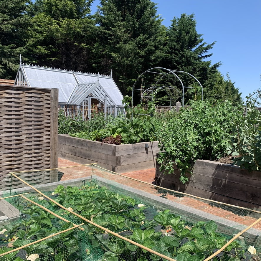 Chilterns kitchen garden with Alitex greenhouse & raised beds by Jo Alderson Design